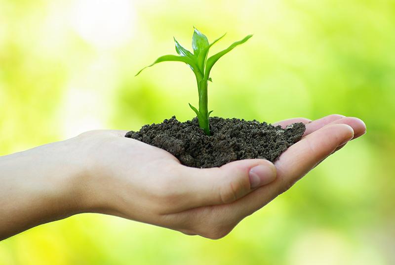 Make soil fertile